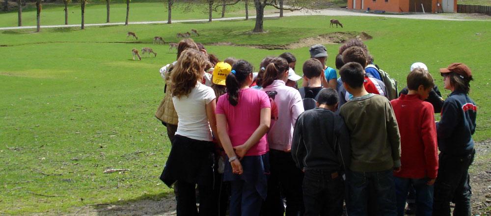 Itinerari di educazione alla sostenibilità