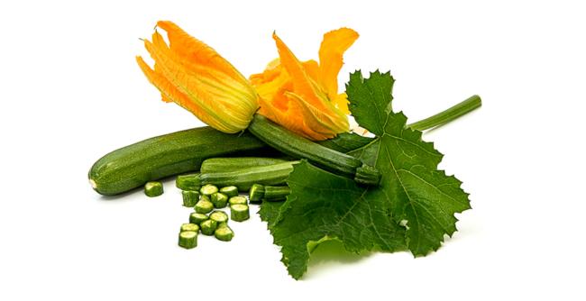 Zucchine VIVISLURP