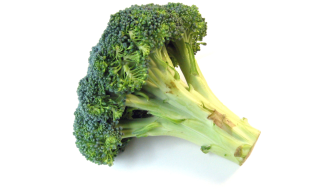 Broccoli Vivislurp 2018