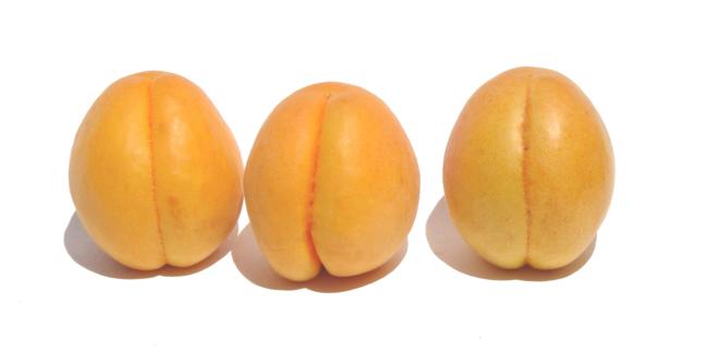 Vivislurp albicocca