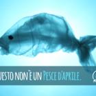 Tiriciclo pesce 01